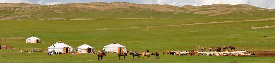 https://www.goyotravel.com/wp-content/uploads/2016/05/mongolia-inner-banner.jpg