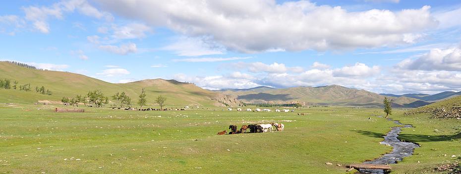 Mongolia Trips