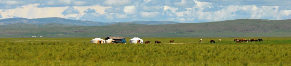 Goyo-Travel-Mongolia-Cultural-tours-Horseriding-homestays