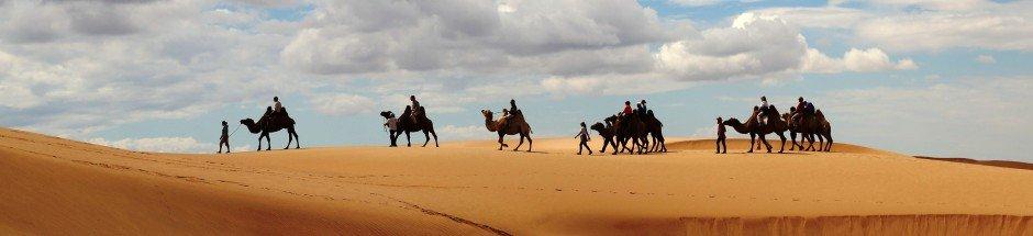 Goyo-Travel-Mongolia-Cultural-tours-Horseriding-camelriding