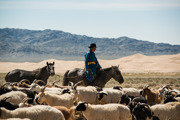 <strong>TAILORMADE TOURS</strong> The ultimate in bespoke itinerary design, handmade by our Mongolia travel specialists.