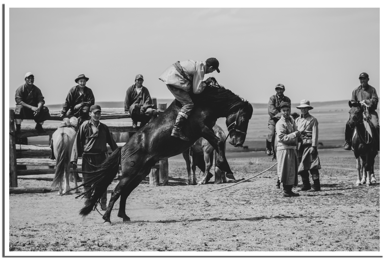 Horses vs Nomads